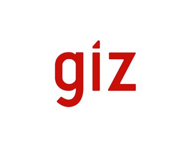 giz-380×285-380x285_c